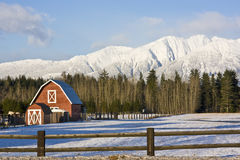 Red Barn in winter landscape Stock Photos