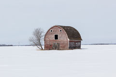 Red barn Royalty Free Stock Photos