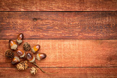Red barn wood with fall decoration Stock Images