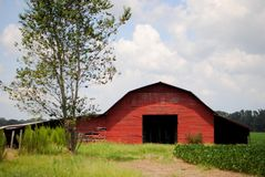 Red Barn. Red, Wooden barn on a Southern farm Stock Photos