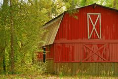 Red Barn in woods. Aged red barn with worn paint in woods under shaded tree canopy Stock Photos