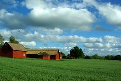 Red barns Royalty Free Stock Photo