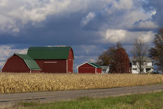 Red Barns. A farm yard with three red barns and the white house Royalty Free Stock Images