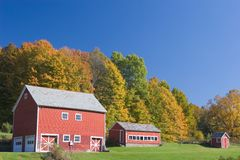 Red Barns in Autumn. Red Barns Against Fall Foliage Royalty Free Stock Photos