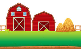 Red barns on the farm Royalty Free Stock Photo