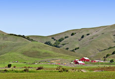 Red Barns, Green Rolling Hills, California. The red barns of a farm in the green rolling hills of Marin County, in Northern California Stock Image