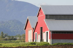 Red Barns in Mountain Valley Stock Images