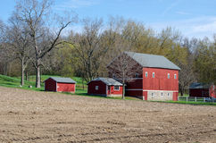 Red barns in spring Royalty Free Stock Image