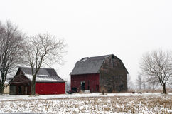 Red barns in winter Stock Photography