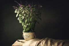 Free Red Basil Plant On A Old Wooden Table With Fork Royalty Free Stock Images - 54380139