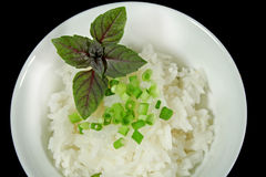 Red Basil And Rice Royalty Free Stock Images
