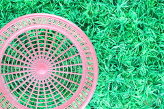 Red basket on the grass. Royalty Free Stock Images