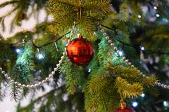 Red Baubels Hang on the Christmas Tree stock image