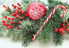 Red bauble with berries and conifer Stock Images