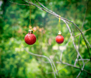 Red bauble - Christmas decoration Royalty Free Stock Photo