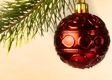 Red bauble. Red christmas bauble hangs from tree stock images