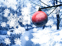 Red bauble in Christmas snow. Single red bauble hanging from branch of tree in snowy festive scene, snowflakes in foreground stock photos