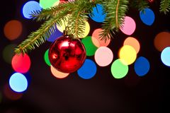 A red bauble on the Christmas tree Royalty Free Stock Images