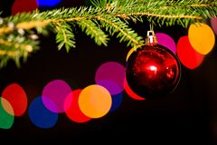 A red bauble on the Christmas tree Royalty Free Stock Photo