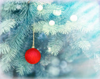 Red bauble on Christmas tree (xmas ball) Royalty Free Stock Photos