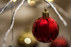 Red bauble hanging from contemporary christmas tree. Close up of a red bauble hanging from contemporary christmas tree. Landscape orientation Royalty Free Stock Images
