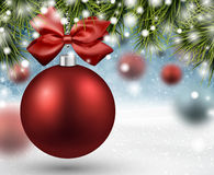 Red bauble on spruce branches Royalty Free Stock Images