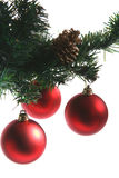 Red baubles. 3 red baubles hanging from green fir sprig and fir cone Royalty Free Stock Photos