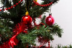 Red baubles on a Christmas tree. Beautiful red baubles on a Christmas tree with white background. Merry Christmas Stock Images