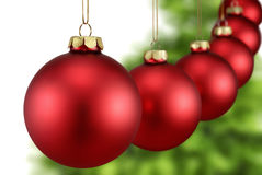 Red baubles in a row in front of fir tree Stock Photo