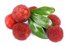 Red bayberry,Arbutus. On the white background Stock Photo
