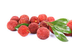 Red bayberry,Arbutus. On the white background Stock Image