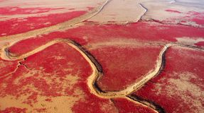Red beach, Stock Image