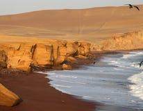 Red Beach, Peru. The beautiful red beach in the paracas nature reserve in peru, south america stock image