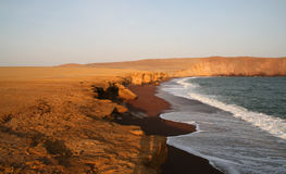 Red Beach, Peru. The beautiful red beach in the paracas nature reserve in peru, south america royalty free stock images