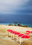 Red beach umbrellas on coast of the Dead Sea Royalty Free Stock Images