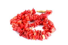 Red beads over white Stock Images