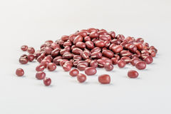 Red bean Stock Photography