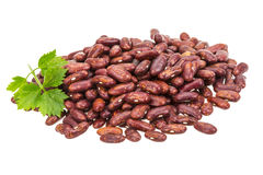 Red Bean Royalty Free Stock Photos