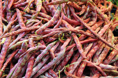 Red bean in a market in italy Royalty Free Stock Photo