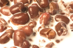 Red Bean Soup Close-up Royalty Free Stock Image
