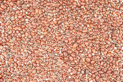 Red bean texture Stock Images