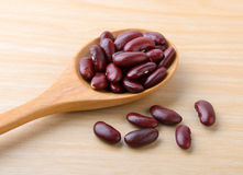 Red bean Stock Image