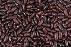 Red Beans Royalty Free Stock Photos