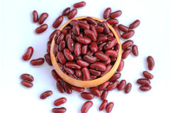 Red beans arranged beautiful seeds on a white background Royalty Free Stock Photo