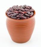Red Beans azuki beans Royalty Free Stock Photos