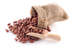 Red beans bag Stock Photography