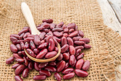 Red beans in burlap sack on wooden background Stock Images
