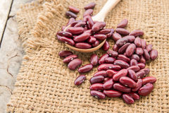 Red beans in burlap sack on wooden background Stock Photos
