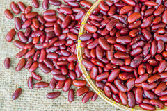Red beans. Dried red beans on a sack background Royalty Free Stock Photography