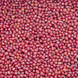 Red Beans for Food. Red beans for sale in a morning market Royalty Free Stock Photography